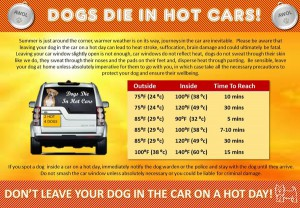 Dogs_Die_In_Hot_Cars_Poster_2015_-_JULY