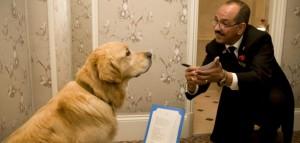 Milestone-Hotel-dog