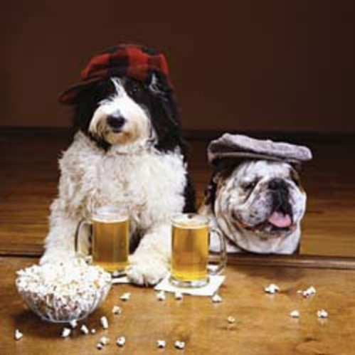 Fido Fun: Dog Park Events for Apartment Communities - Dog ON It ...