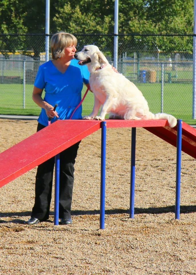 Meridian Id Dog Park