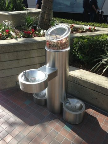 Dog Treat Dispenser >> Dream Fountain