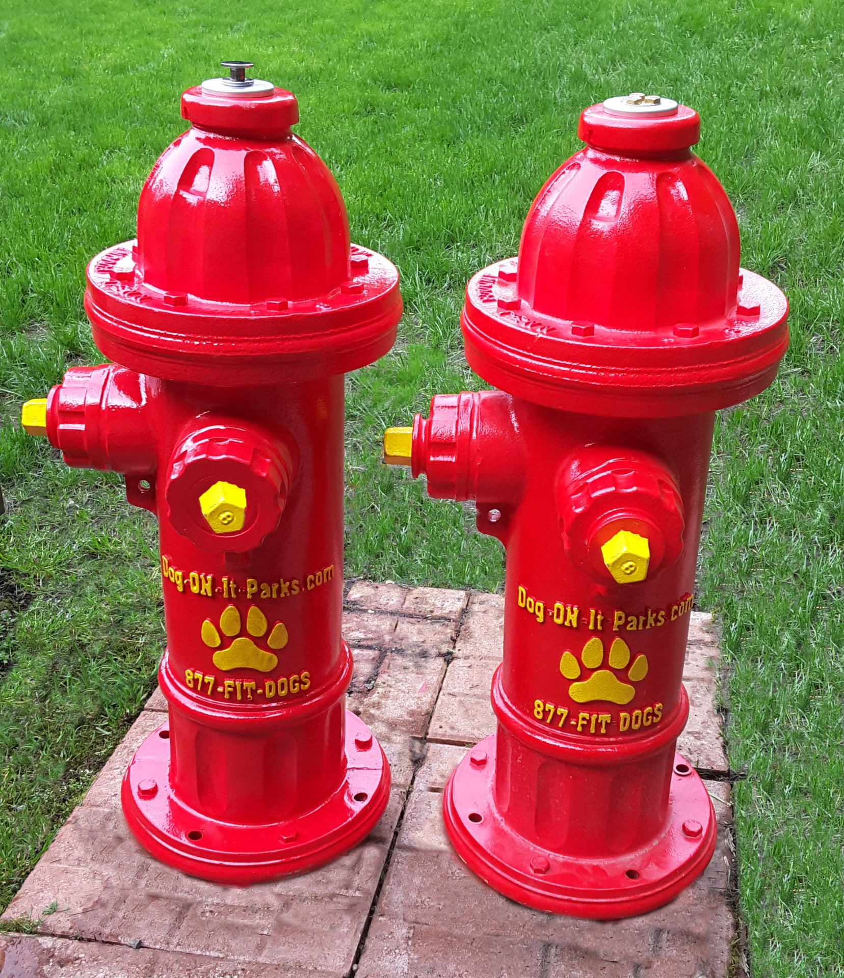 fixfire co moreover American Gas Meter Ac 630 moreover Chapter 14 Fire Fighter Academy together with Top Spray Fire Hydrant together with Storz Coupling. on fire hydrant systems