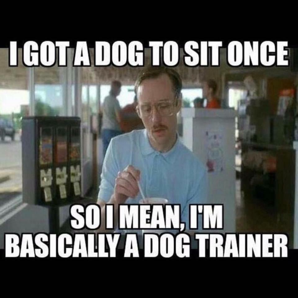 Dog Trainer Dog On It Parks Blog