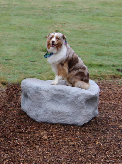 NatureDog™ Small Boulder