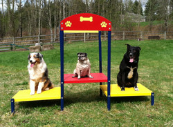 Agility Equipment Step Up Table