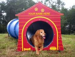 S-Tunnel (shown with optional dog house)