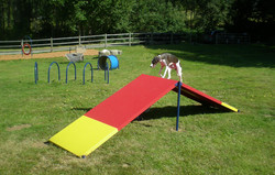 Agility Equipment A-Frame