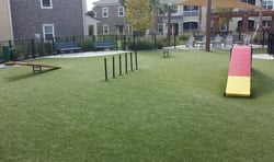 Synthetic Dog Park Turf