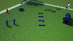Dog Park Packages/Kits Small Dog System