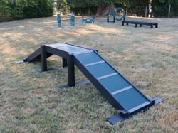 Eco Dog Walk Ramp (Small)