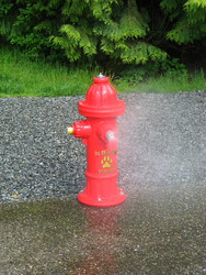 Fountains & Water Features Spray Fire Hydrant